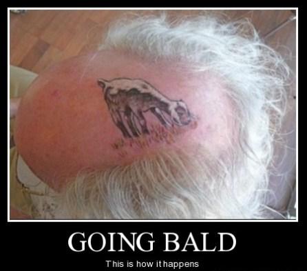 Image result for bald one liner joke